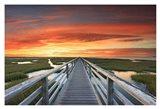 Greys Beach Sunset