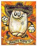 Burrito Perfecto
