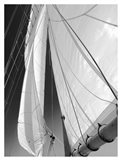 Sailboat Sails Florida