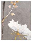 White Flower on Medium Gray