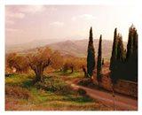 Toscana, Italia No. 709