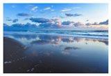 Blue Shores
