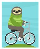 Cycling Sloth