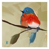 Bluebird No. 21