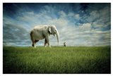 Elephant Follow Me