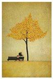 The Cherry Tree - Fall