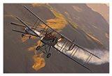 Royal Aircraft Factory FE 2b