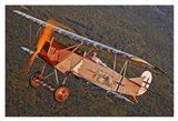 Fokker D. VII (2)