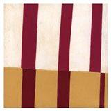 Broken Stripes 2