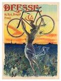 Deesse Cycles