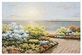 Deck & Flowers