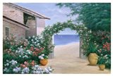 Seaside Trellis