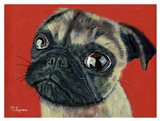Pugly