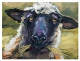 Bless Ewe
