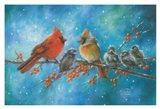 Cardinals Family