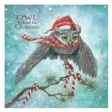 Owl Be Home for Christmas!