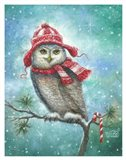 HOOT this Christmas!