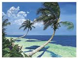 Beckoning Palms