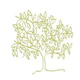 A Citron Tree