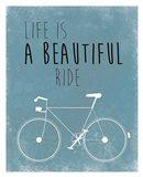 A Beautiful Ride