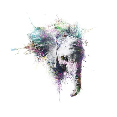 Elephant Poster by VeeBee for $58.75 CAD