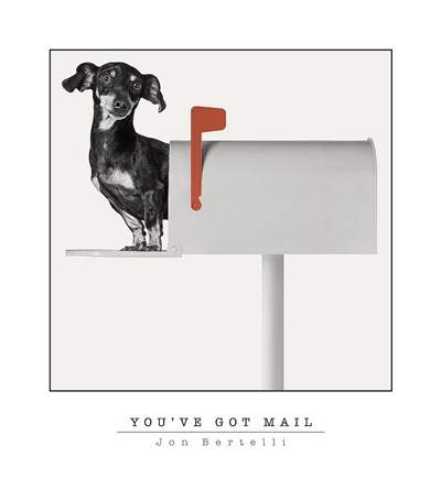 You've Got Mail Poster by Jon Bertelli for $27.50 CAD