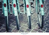 Bicycle Line Up 1