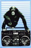 Monkey Boom Box