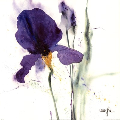 Iris I Poster by Marie-Elizabeth Barboud-Koch for $68.75 CAD