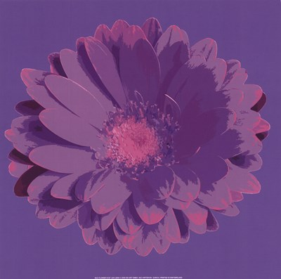 Flower III Poster by Jan Lens for $12.50 CAD