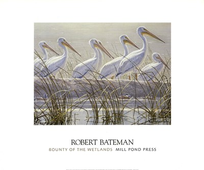 Bounty of the Wetlands (detail) Poster by Robert Bateman for $30.00 CAD