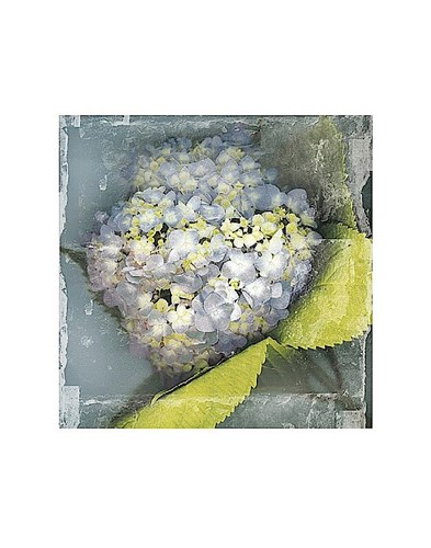 Antique Bloom Poster by Erin Clark for $16.25 CAD