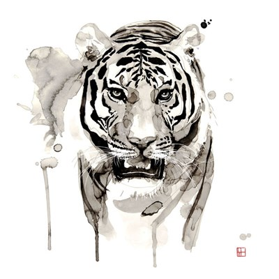 Tiger Poster by Philippe Debongnie for $60.00 CAD