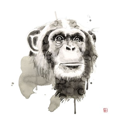 Chimp Poster by Philippe Debongnie for $32.50 CAD