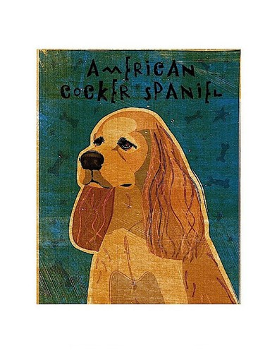 American Cocker Spaniel (buff) Poster by John W. Golden for $16.25 CAD