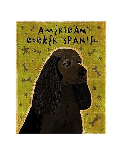 American Cocker Spaniel (black) Poster by John W. Golden for $16.25 CAD