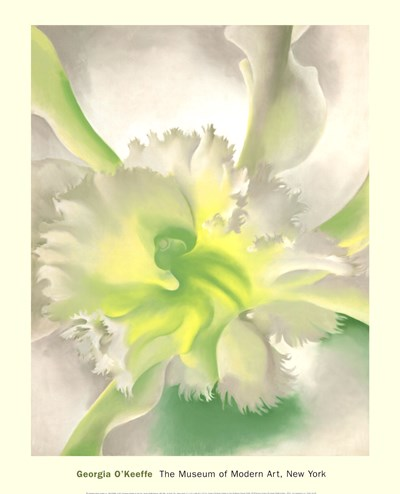 An Orchid Poster by Georgia O'Keeffe for $60.00 CAD