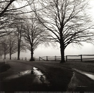 After the Rain Poster by Harold Silverman for $16.25 CAD
