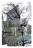 Flatiron Collage