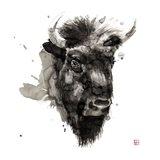 Buffalo