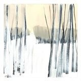 Winter Woods II