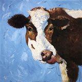 Cow #303