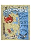 Delaware Beach Map