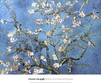 Almond Blossom, 1890 Poster by Vincent Van Gogh for $26.25 CAD