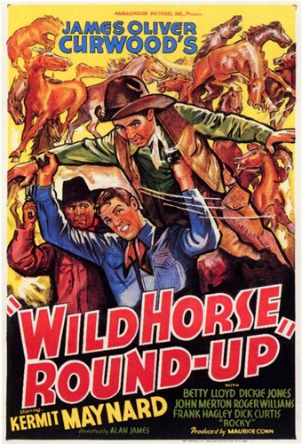 Wild Horse Round-Up Poster by Unknown for $26.25 CAD