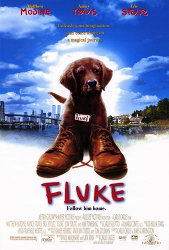 Fluke Poster by Unknown for $26.25 CAD