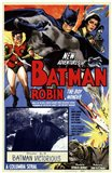 Batman and Robin - Batman Victorious