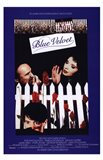 Blue Velvet White Picket Fence