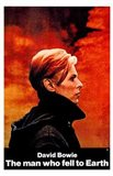 The Man Who Fell to Earth Side View