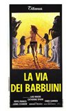 Via Dei Babbuini  La
